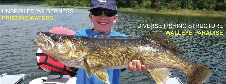 Walleye Fishing on Rainy Lake